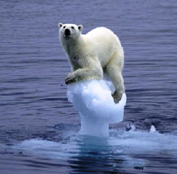 The last polar bear on the last ice floe? Uh, no.  Just a pic of another DC  pundit wondering why his his ass is so cold at night.
